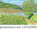 terraced, rice-fields, paddy 15416968