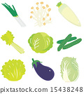 含贝塔胡萝卜素不高的蔬菜 矢量 一组 15438248