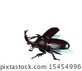 rhinoceros beetle, take off, fly away 15454996