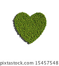 heart create by tree with white background 15457548
