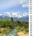 姬川 河 鮮綠 15485299