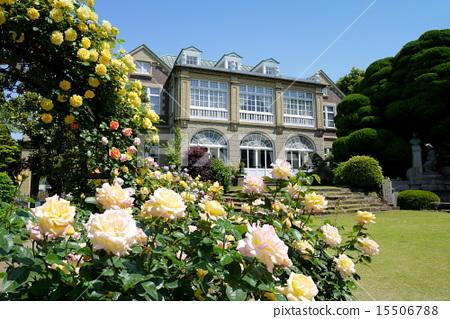 ห้องโถง Hatoyama และดอกกุหลาบ 15506788