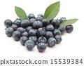 藍莓 滿 全 15539384