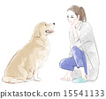 Dog and lady 15541133