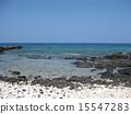 Coast of Hawaii island 15547283