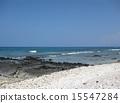 Coast of Hawaii island 15547284