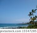 Coast of Hawaii island 15547285