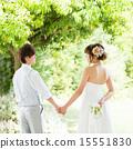新郎新娘 人类 人物 15551830