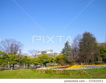 Kotobuki Park 15563052