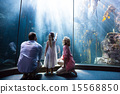 Daughter pointing a fish while her mother and father looking at 15568850