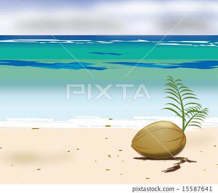 Palm fruit and sandy beach 15587641