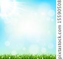 lawn, green, grass 15590508