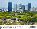 Fresh green Osaka Castle and neighboring streets 15594000
