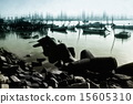 四足动物 河 船 15605310