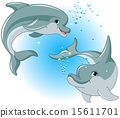 Dolphin couple 15611701