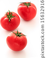 西红柿 番茄 红 15632916