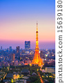 Aerial View of Tokyo City and Tokyo Tower 15639180