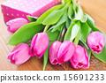 flowers 15691233
