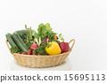 綠色黃色蔬菜 15695113