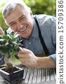 senior, gardening, man 15709386