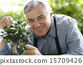 man, elderly, gardening 15709426