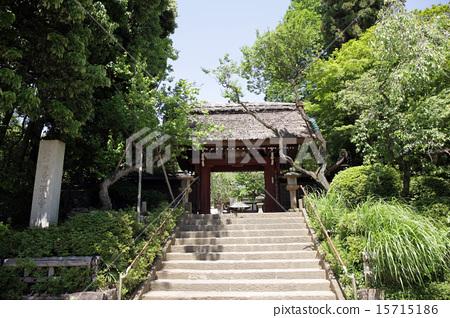 廟門 15715186