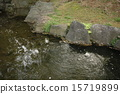 แหล่งน้ำ,สระน้ำ,ผิวน้ำ 15719899