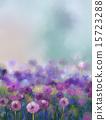 Oil painting Purple onion flower 15723288