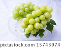 shine muscat, vine, green color 15743974