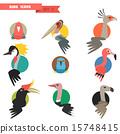 조류, 새, 열대지방 15748415