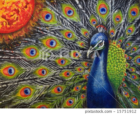 Peacock and sun 15751912