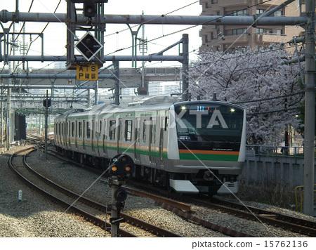 湘南新宿線山手線E233系列大崎站 15762136