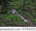 Minamizawa spring spring 15765053