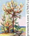 Pines on seacoast 15766711