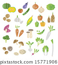 Set of vegetables 15771906