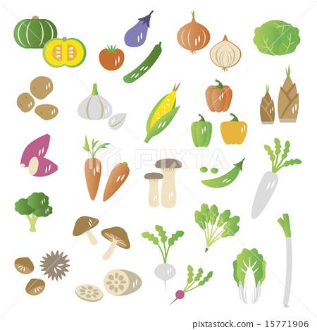 一套 蔬菜 食品 15771906
