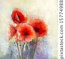 Water color red poppy flowers painting. 15774988