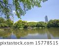 city, center, tree 15778515