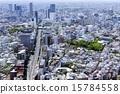 市中心 涩谷 东京 15784558
