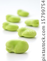 蠶豆 植物人 黃豆 15799754