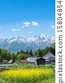 ฤดูใบไม้ผลิ,จุดสนใจ,สถานที่ท่องเที่ยว 15804854