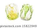food material_010 15822949
