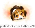 My Doggie_001 15825520