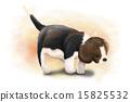 My Doggie_008 15825532