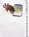 Christmas Props II_127 15842167