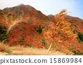Autumn leaves of Nasu / Asahi-dake 15869984