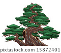 식목, 분재, 나무 15872401