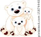 animals, sitting, bear 15874440
