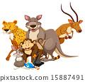 猴子 野生生物 兔子 15887491