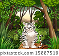 Tiger 15887519